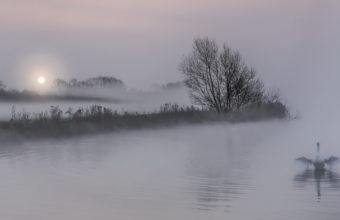 Fog Wallpapers 26 1920 x 1080 340x220