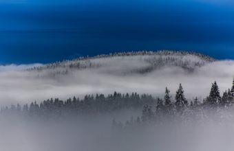 Fog Wallpapers 40 2048 x 1365 340x220