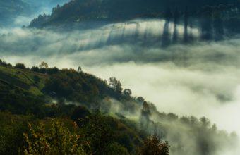 Fog Wallpapers 41 3100 x 2000 340x220