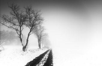 Fog Wallpapers 46 1920 x 1280 340x220
