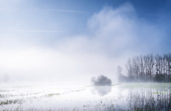 Fog Wallpapers 47 2785 x 1440 340x220