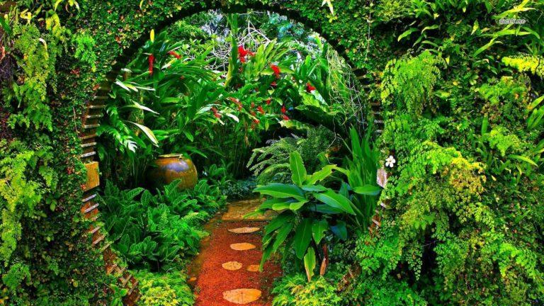 Garden Wallpapers 20 1366 x 768 768x432