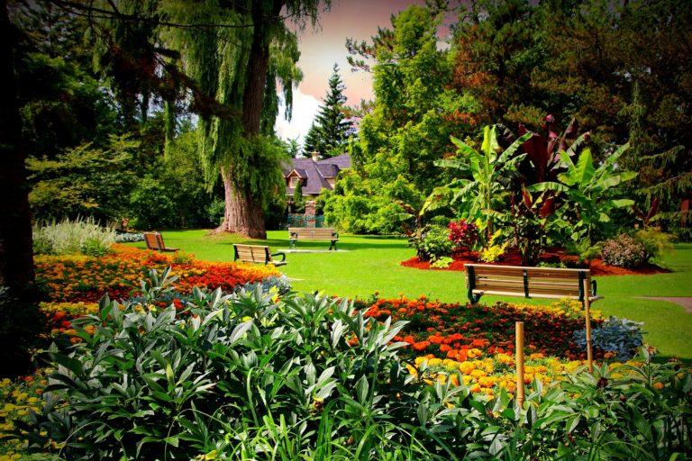 Garden Wallpapers 33 2400 x 1600 768x512
