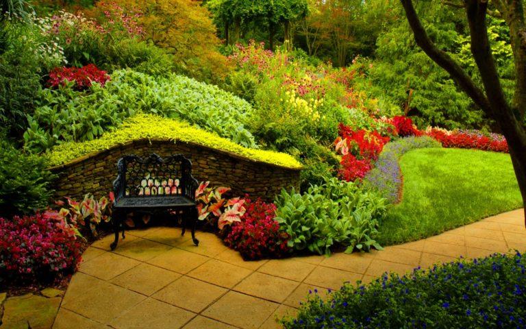 Garden Wallpapers 35 1920 x 1200 768x480