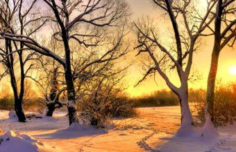 Golden Snow Hdr 1920 x 1080 1 340x220