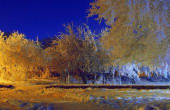 Good Evening Mister Winter 1920 x 1080 1 340x220