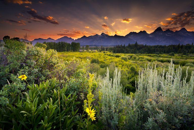 Grand Teton National Park Sunset 4579 x 3057 768x513