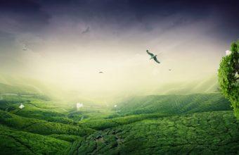 Green Landscape 1920 x 1200 340x220
