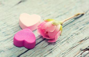 Heart Flower Tenderness 3830 x 2550 340x220