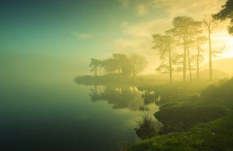 Lake Trees Fog 1920 x 1200 340x220
