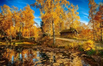Landscape Nature Autumn Lake Trees 1920 X 1280 340x220