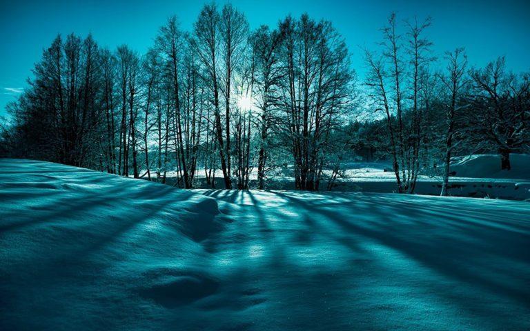 Landscape Snow Trees Winter Nature 1920 x 1200 768x480