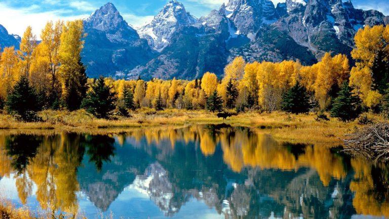 Landscapes Autumn Season 1920 X 1080 768x432