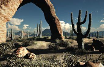 Landscapes Nature Desert Cactus 1920 x 1200 340x220