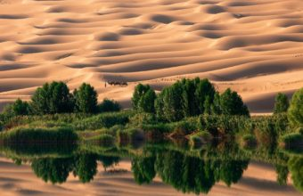 Landscapes Nature Desert National 1920 x 1440 340x220