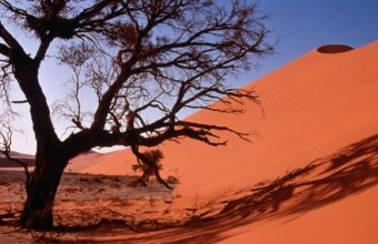 Landscapes Nature Deserts Sand 1600 x 1200 340x220