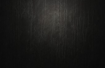 Leather Wallpapers 07 1920 x 1080 340x220