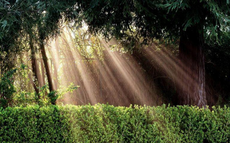 Light Sun Inspiration 1680 x 1050 768x480