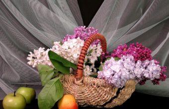 Lilac Shopping Spring 1274 x 900 340x220