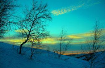 March Winter Snow 1200 x 900 1 340x220