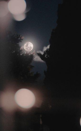 Moon Phone Wallpaper 1440x2560 078 340x550