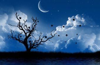 Moon Wallpapers 35 1024 x 768 340x220