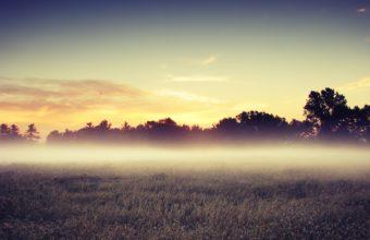 Morning Mist 2560 x 1600 340x220