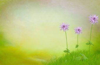 Nature 3d Art Flowers Spring 1920 x 1200 340x220