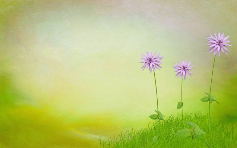 Nature 3d Art Flowers Spring 1920 x 1200 768x480
