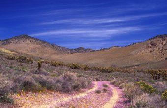 Nature Deserts 2560 x 1440 340x220