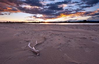 Nature Landscapes Beaches Sand Drift 1920 x 1200 340x220