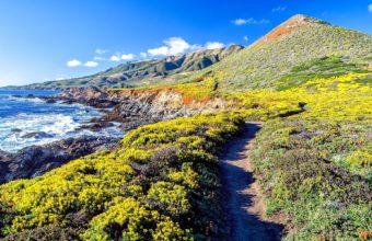 Nature Landscapes Cliff Hills Vegetation 1920 x 1200 340x220