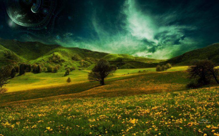 Nature Landscapes Fields Flowers 1920 x 1200 768x480