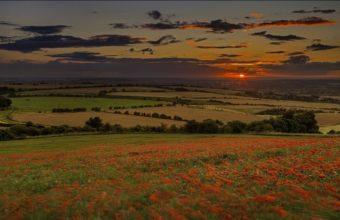 Nature Landscapes Hills Fields Grass 1920 x 1080 340x220