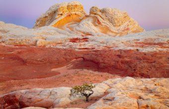 Nature Rocks Arizona 1599 x 1124 340x220