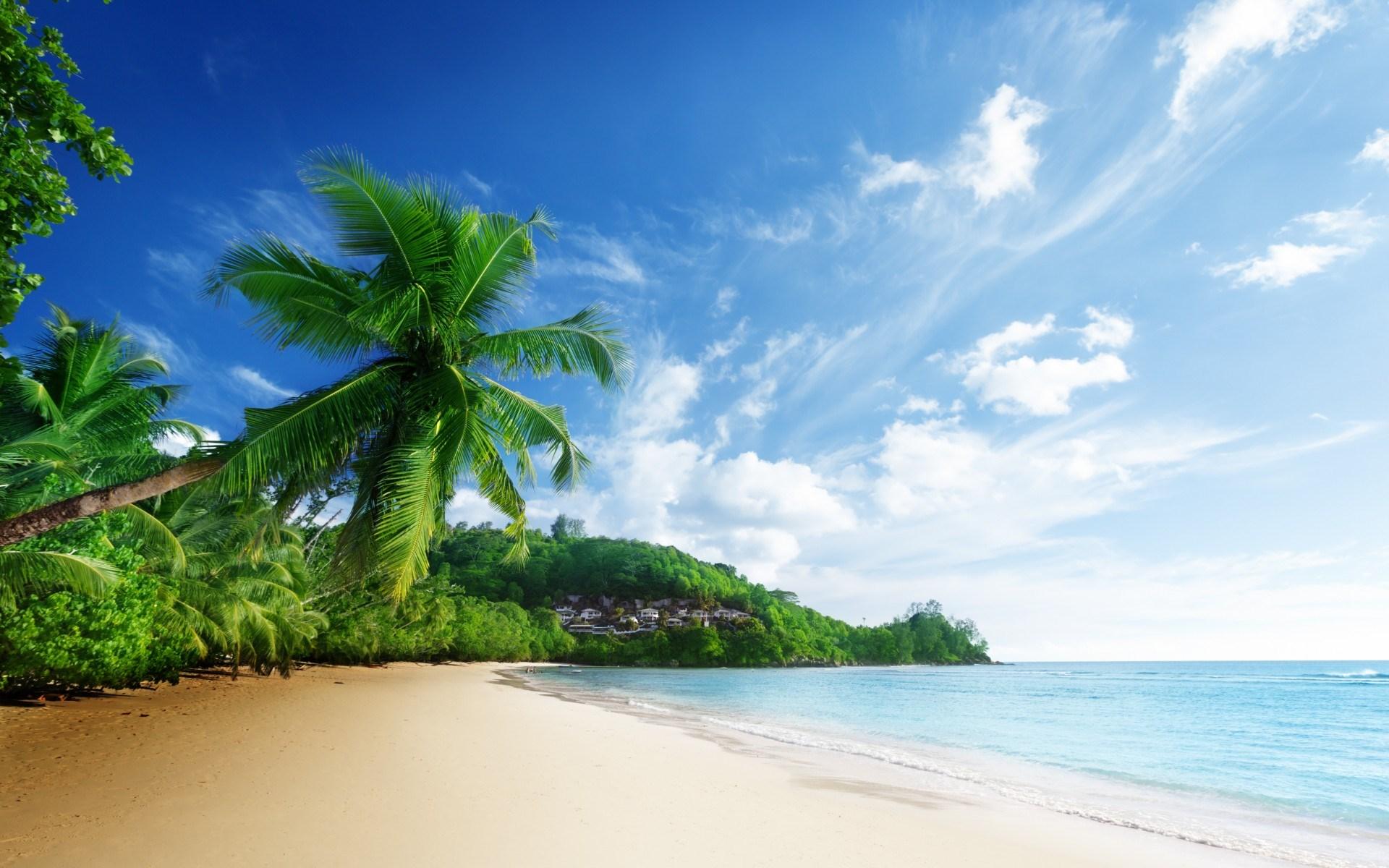 Nature Scenery Sea Beach Sky