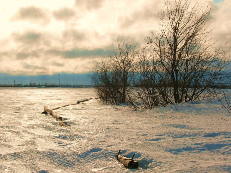 North Steppe Winter 1200 x 900 768x576