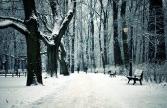 Park Bench Winter City 1920 X 1200 340x220