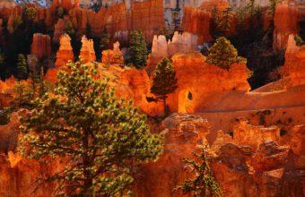 Parks USA Bryce Canyon Utah Canyon 2048 x 1365 340x220