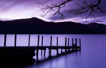 Purple Dusk 1920 x 1200 340x220
