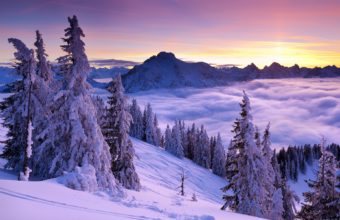 Purple Winter Sunset 1920 x 1200 340x220