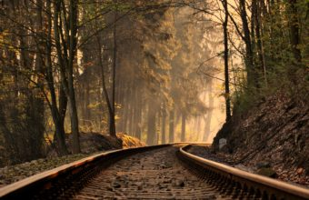 Railroad Forest Train Tracks Trees 3602 x 2398 340x220