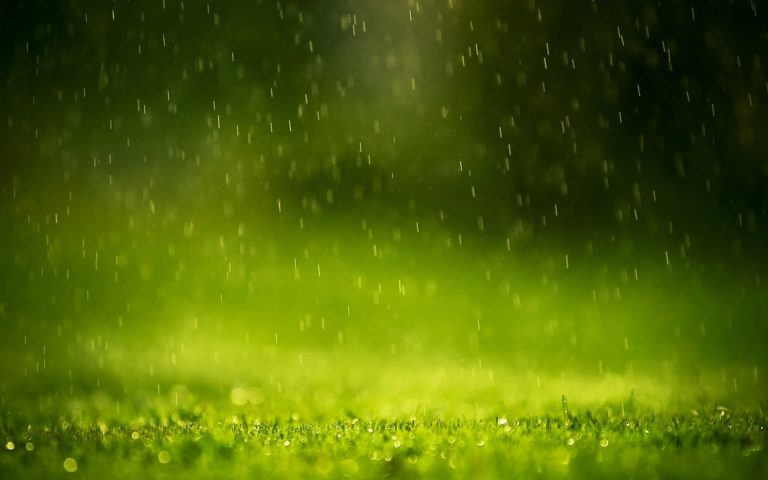 Rain Drops 1920 x 1200 768x480