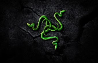 Razer Wallpapers 07 2560 x 1440 340x220