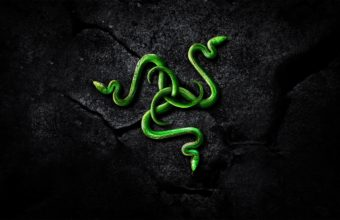 Razer Wallpapers 29 2560 x 1440 340x220