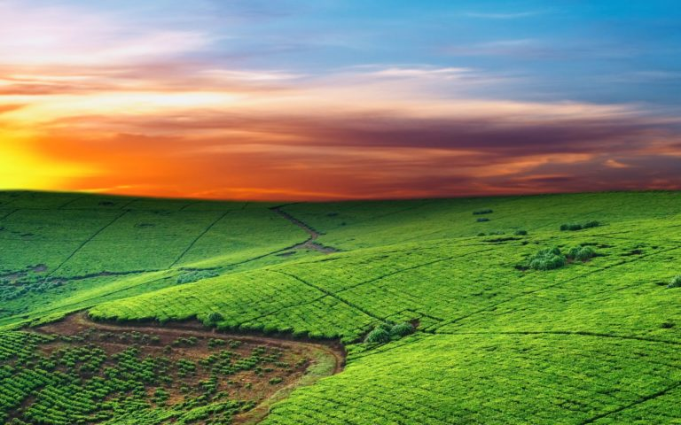 Red Morning Sky 2560 x 1600 768x480