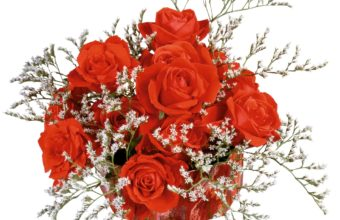 Red Roses Bouquet 1920 x 1600 340x220