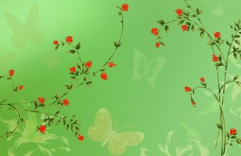 Red Roses On Green Background 1920 x 1080 340x220