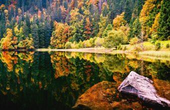 Reflected Autumn 1920 X 1080 340x220