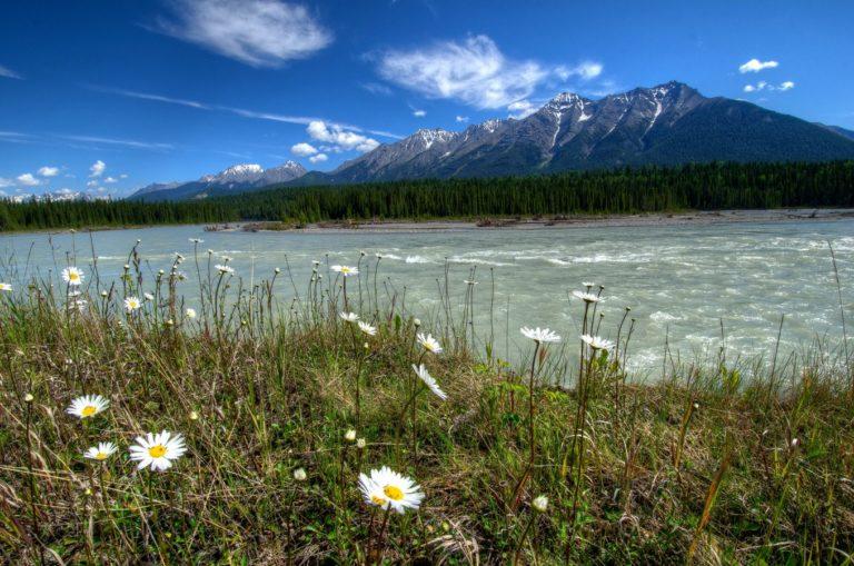 Rivers Of Canada Parks Landscape 1358 x 900 768x509